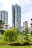 Bishan Park Royalty Free Stock Photo