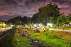 Bishan-Park mit dem Grün bis zum Nacht Stockfotografie