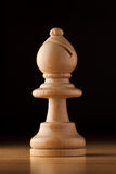Bishop chess Stock Photography
