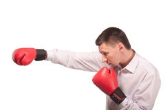 Bisinessman jest ubranym bokserskie rękawiczki Zdjęcie Stock