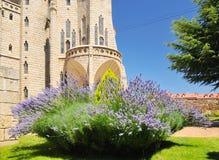 biskops- slott för astorga detalj Royaltyfri Bild