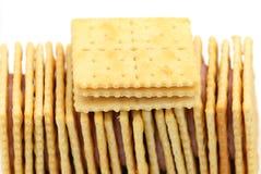 Biskuit Stockbild