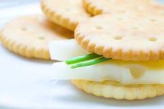 Biskuit mit Käse und Schnittlauchen auf Platte lizenzfreie stockfotos