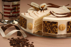 Biskuitschokoladenkuchen Stockfoto