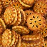 biskwitowy ananas Obraz Stock