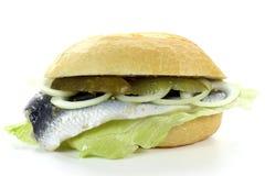 Bismarck herring bun Stock Images