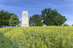 Bismarck Tower in a Flower Field at Augsburg Royalty Free Stock Photography