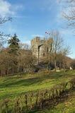 Bismarckwarte (Bismarck observation point) in Lindenfels Stock Images