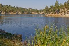 Bismark jeziorny shireline w Custer parku zdjęcie stock