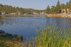 Bismark lake shireline in Custer Park. Bismark Lake in Custer State Park, South Dakota stock photo