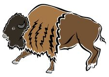 Bison or buffalo Royalty Free Stock Photo