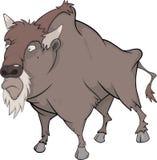 Bison, buffle illustration stock