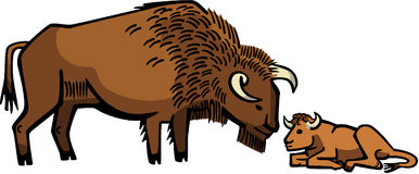 Bison with Calf. Illustration a bison with her young calf Royalty Free Stock Photos