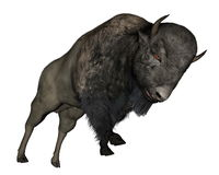 Bison charging - 3D  render Royalty Free Stock Photography