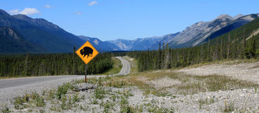 Bison crossing sign Stock Photo