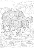 Bison de buffle de taureau de Zentangle Image libre de droits