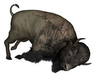Bison dead - 3D  render Stock Images