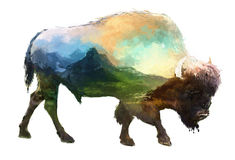Bison double exposure illustration. The bison on white background double exposure illustration. Retro design graphic element. This is illustration ideal for a Stock Photo
