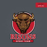Bison Head Logo Mascot Emblem Gruppi di sport dell'istituto universitario del talismano, logo della scuola del toro, maglietta de Immagine Stock