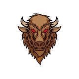 Bison head vector illustration Stock Photography