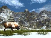 Bison i berget - 3D framför stock illustrationer
