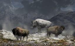 Bison King stock illustratie