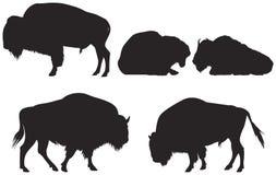 Bison ou buffle illustration de vecteur