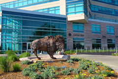 Bison Sculpture Sioux Falls South Dakota Stock Images