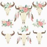 Bison Skull tribal floral Foto de archivo libre de regalías