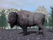 Bison in the nature - 3D render Stock Photos