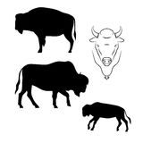 Bison vector silhouettes Royalty Free Stock Images