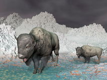 Bisons in the mountain - 3D render Royalty Free Stock Photos