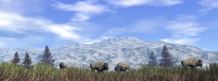 Bisons in the nature - 3D render Royalty Free Stock Image