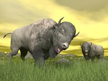 Bisons in nature - 3D render Royalty Free Stock Photography