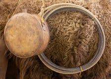 Bisonskinn medhårs på och och gammal vattenflaska och lasso arkivfoton