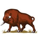 Bisonte do touro do búfalo ilustração royalty free