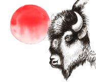 Bisonte e sol ilustração do vetor