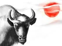 Bisonte e sole Fotografia Stock Libera da Diritti