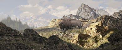 Bisonte em Yellowstone ilustração do vetor