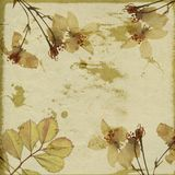 Bisque yellow stationary. Bisque yellow antiqued gold blossom stationary Stock Image