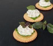 Bisquit薄脆饼干开胃菜用乳脂干酪和蓬蒿顶部 图库摄影