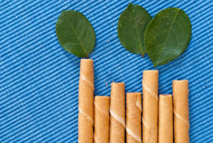 Bisquit Bamboo Snack Royalty Free Stock Images