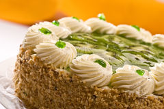 Bisquit cake. With  kiwi fruit on the plate Stock Images