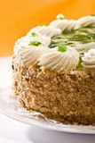 Bisquit cake Royalty Free Stock Photos