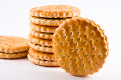 Bisquit cakes. Group of bisquit cakes macro close up Stock Images