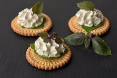Bisquit cracker appetizers with cream cheese and basil topping. On black stone background Royalty Free Stock Images