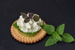Bisquit cracker appetizers with cream cheese and basil topping. On black stone background Stock Images