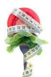 Bissen des Salats Lizenzfreie Stockfotos