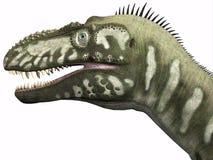 Bistahieversor Dinosaur Head Royalty Free Stock Photos