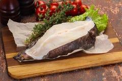 Bistecca cruda della bavosa lupa immagine stock